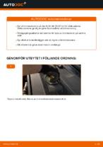 Gratis instruktioner online hur installerar man Bromsskivor AUDI A6 (4F2, C6)