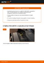 Uživatelský manuál AUDI pdf