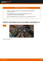 Gratis handleiding voor het Schroefveren vernieuwen RENAULT KANGOO (KC0/1_)