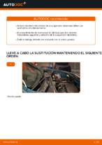 Cómo cambiar y ajustar Muelle de chasis RENAULT KANGOO: tutorial pdf