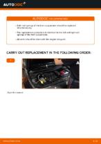 Step by step PDF-tutorial on Springs RENAULT MEGANE II Saloon (LM0/1_) replacement