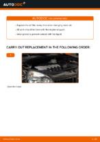 Manual PDF on CLIO maintenance