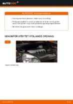 När byta Fjäderben RENAULT CLIO II (BB0/1/2_, CB0/1/2_): pdf handledning