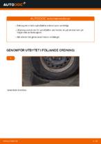 Laga Motorbussning: pdf instruktioner för RENAULT CLIO