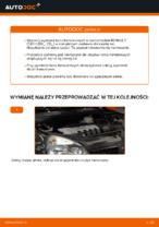 Wymiana Tarcze hamulcowe: pdf instrukcje do RENAULT CLIO