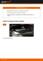 Rokasgrāmata PDF par CLIO apkopi