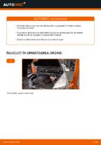 Manual intretinere AUDI pdf