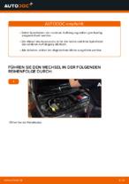 Werkstatthandbuch für Renault Megane Scenic online