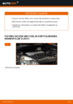 Schritt-für-Schritt-Anweisung zur Reparatur für Renault Clio 4