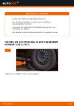 Ausführliche Auto-Reparaturanweisung für Spurstangengelenk RENAULT