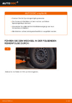 Wie der Austausch von Spurstangenköpfen bei RENAULT CLIO II (BB_, CB_)-Autos funktioniert