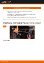 Comment remplacer le vérin à gaz du couvercle de coffre sur une RENAULT CLIO II (BB_, CB_)