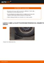 Reemplazo Rodamiento de rueda instrucción pdf para RENAULT CLIO