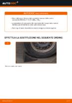 Come cambiare e regolare Cuscinetto mozzo ruota posteriore e anteriore: guida gratuita pdf