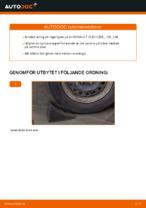 PDF Manual för reparation av reservdelar bil: CLIO II (BB0/1/2_, CB0/1/2_)