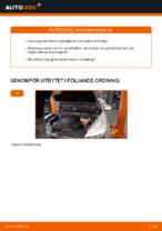 KAMOKA 2120104 för AUDI | PDF instruktioner för utbyte