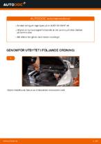 PDF Manual för reparation av reservdelar bil: A6 Sedan (4F2, C6)