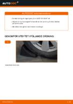 bak och fram Hjullager AUDI A4 | PDF instruktioner för utbyte