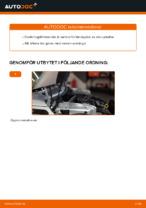 Laga Tändkassett: pdf instruktioner för MINI MINI