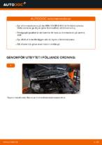 bilreservdelar MINI Hatchback   PDF Manual för reparation