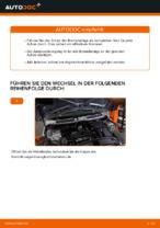 PDF Reparatur Tutorial von Ersatzteile: MINI Schrägheck (R56)