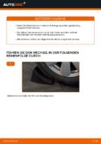 Schritt-für-Schritt-Anweisung zur Reparatur für Audi A6 4f2