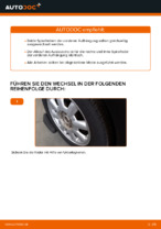 MINI Schraubenfeder hinten links rechts wechseln - Online-Handbuch PDF