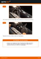 Comment remplacer les essuie-glaces arrière sur une RENAULT CLIO II (BB_, CB_)