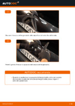 Quando cambiare Spazzola tergivetro RENAULT CLIO II (BB0/1/2_, CB0/1/2_): manuale pdf