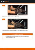 Online bezplatné pokyny ako obnoviť Stieracia liżta RENAULT CLIO II (BB0/1/2_, CB0/1/2_)
