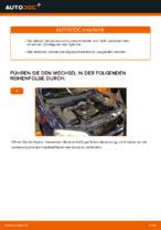 VEMO V24-70-0019 für Astra G CC (T98) | PDF Handbuch zum Wechsel
