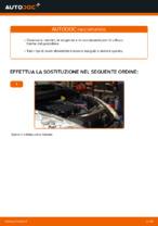 Filtro manuale di sostituzione con illustrazioni