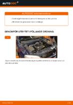 Gratis instruktioner online hur installerar man Tändkassett OPEL ASTRA G Hatchback (F48_, F08_)