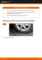 Recomendações do mecânico de automóveis sobre a substituição de PEUGEOT Peugeot 208 1 1.2 Amortecedor