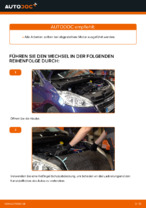 BANDO 4PK815 für 208 I Schrägheck (CA_, CC_) | PDF Handbuch zum Wechsel