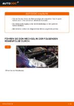 PDF Wechsel Anleitung: Bremsklötze PEUGEOT hinten + vorne