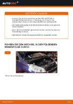 Scheibenbremsen gelocht auswechseln: Online-Handbuch für PEUGEOT 208