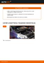 Guide PDF downloade