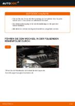 Serviceanleitung im PDF-Format für CLIO