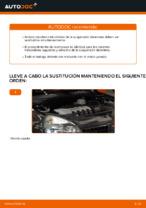 Cambiar Muelles de Suspensión RENAULT CLIO: manual de taller