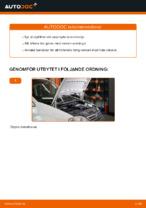 Gratis instruktioner online hur installerar man Oljefilter VW CADDY III Estate (2KB, 2KJ, 2CB, 2CJ)