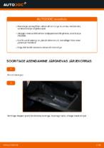 Automehaaniku soovitused, selleks et vahetada välja NISSAN Nissan X Trail t30 2.2 Di 4x4 Piduriketas