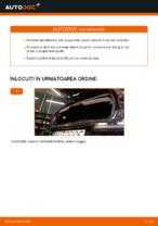 Cum se înlocuiesc amortizoarele suspensiei din spate a autovehiculului OPEL CORSA C (F08, F68)