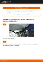 Reparatur- und Austauschanleitung für Ihr Auto