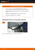 PDF guide för byta: Bromsskivor NISSAN bak och fram