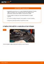 Jak vyměnit zadní brzdové kotouče na VOLKSWAGEN PASSAT B5 (3BG, 3B6)