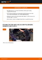 Hilfreiche Fahrzeug-Reparaturanweisung für vorderachse und hinterachse Domlager OPEL