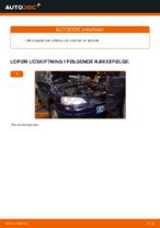 Olier og Væsker workshop manualer online