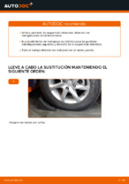 Manual de instrucciones NISSAN X-TRAIL