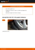 Gratis instruktioner online hur installerar man Styrekugle PEUGEOT 206 CC (2D)